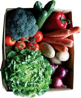 Cesta de Alimentos Ecologicos
