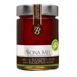 Miel de Eucalipto 450 Gr (Bonamel)