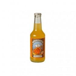 Refresco Naranja 25 Cl (Naturfrisk)