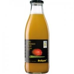 Néctar de Mango y Aloe 1 L (Delizum)